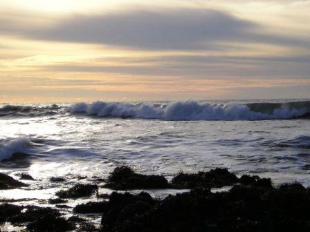 California coastline along Hwy 1 (Pacific Coast Highway).
