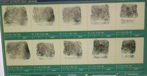 digital fingerprint cards