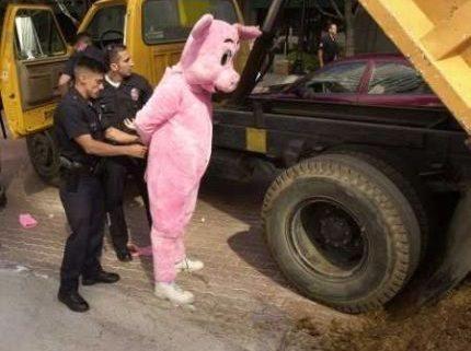 Cops: Did that just happen