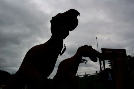 Fighting Dinosaurs