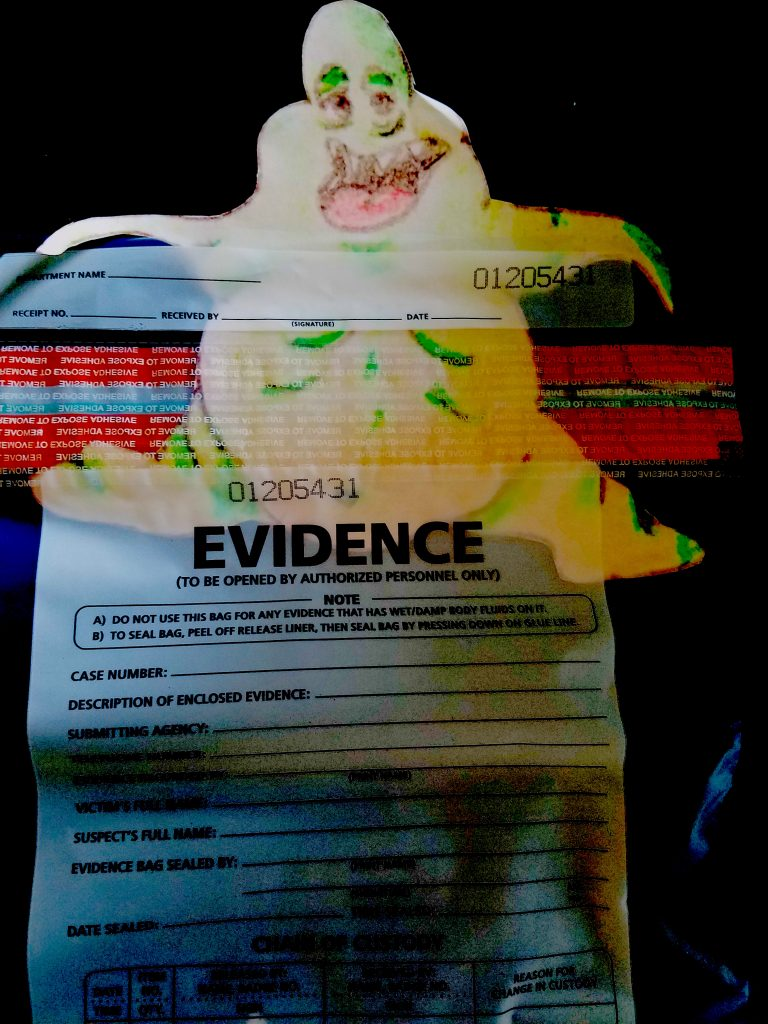 plastic evidence bags